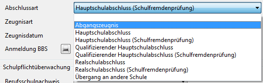 S-abschluesse-auswahl-ms.png