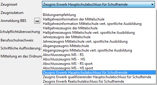S-abschluesse-auswahl-zeugnisart-ms.png